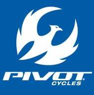 Pivot_Logo_Stacked